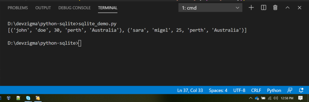 python sqlite crud example get_customers(city) output