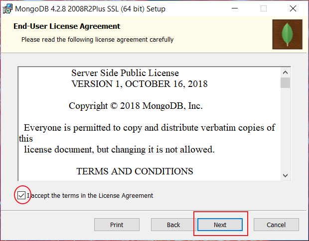accept end user agreement of mongodb installation